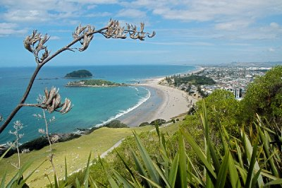 Mount Maunganui New Zealand