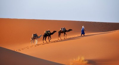 Camel Safari Merzouga