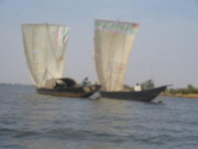 Sailing boat on the Niger river