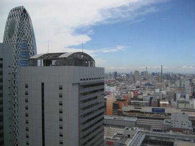 Shinjuku and Tokyo from 34th floor