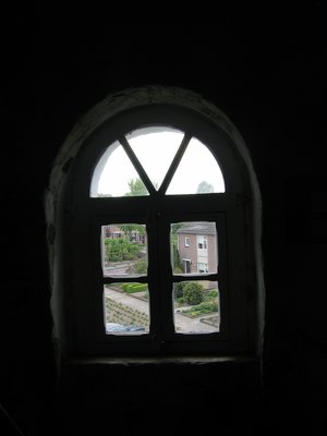a view from a window