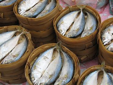 LP: fish for sale