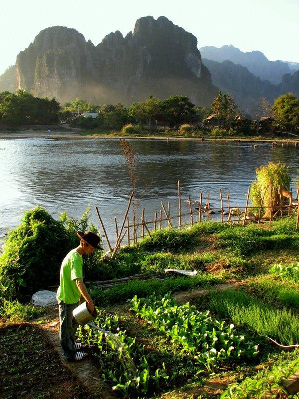Organic Garden, Vang Vieng, Laos