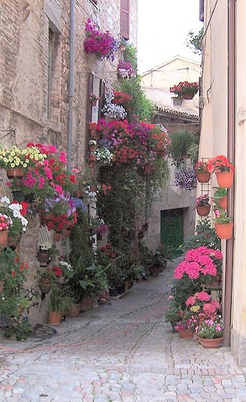 Colourful corner in Spello