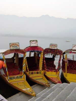 Shikaras on the Dal Lake, Srinagar