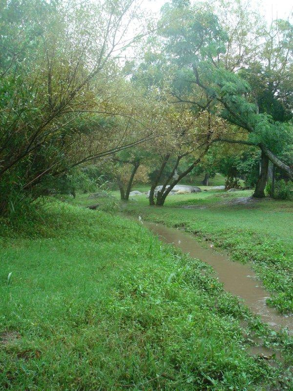 Green Grass of Home at the Villa Tulumba Cordoba  Argentina