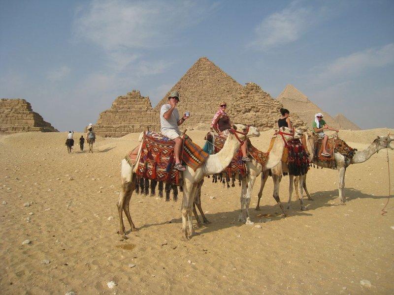 large_8Giza_Camel..80x768_.jpg