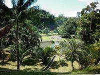Botanical Gardens, Bogor
