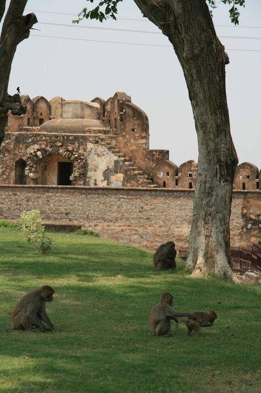 Jhansi, Shankar Fort