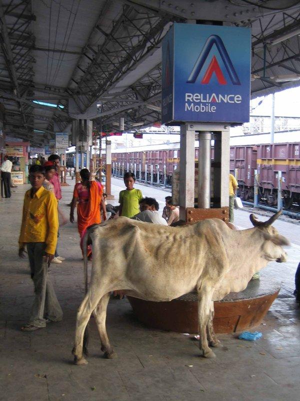 Jhansi train station