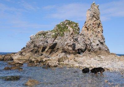 Asturias_114.jpg