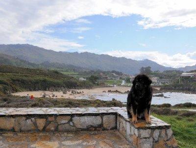 Asturias_133.jpg