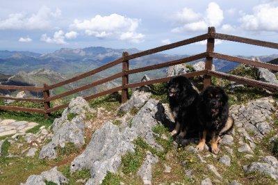 Asturias_2_035.jpg