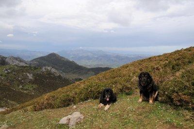 Asturias_2_075.jpg