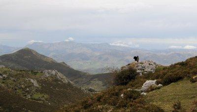 Asturias_2_107__2_.jpg