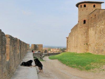 Carcassonne_-_m_ll1.jpg