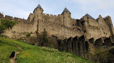 Carcassonne_-_myyrid.jpg