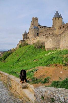 Carcassonne_-_v_ravad.jpg