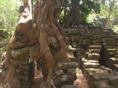 Angkor_RoadWall.jpg