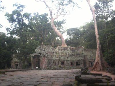Angkor_TaProhmRear.jpg