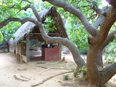 Auroville_..Kitchen.jpg