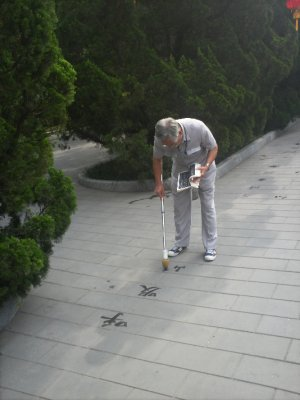 Beijing_Pa..grapher.jpg