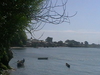 Boats at Wasini