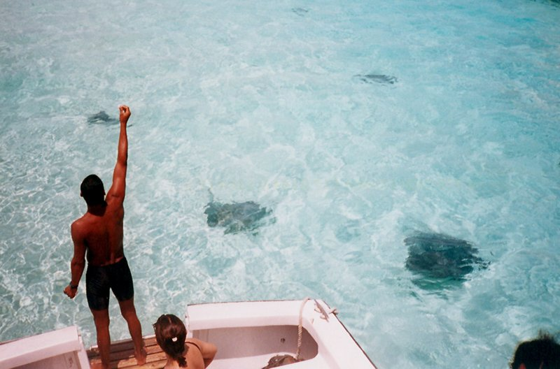 Stingray City