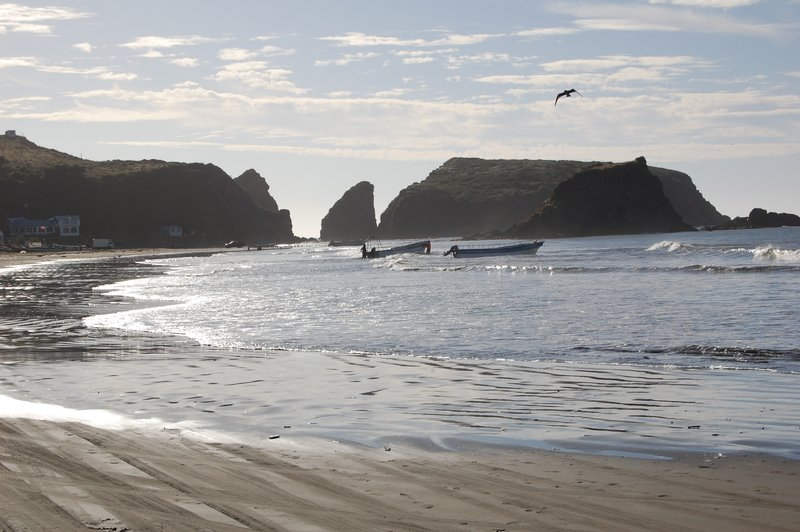 View of the beach in Chiloe