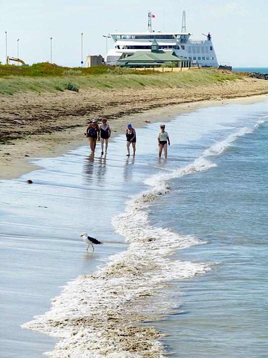 Queenscliff beach & ferry