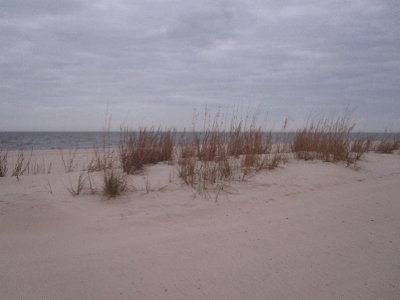 The Beach in Mississippi