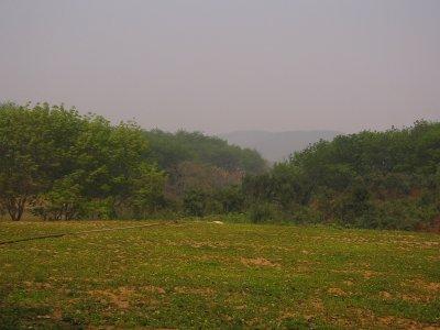 Jinghong Botanical Gardens