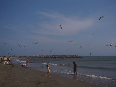 Beach at Veracruz, Playa Mocambo