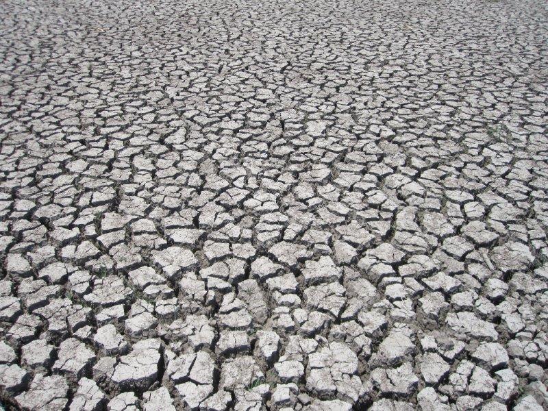 Crack Soil