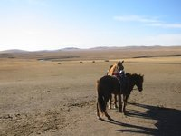 Horses outside of Hailar