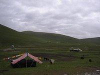 Nomads in Qinghai