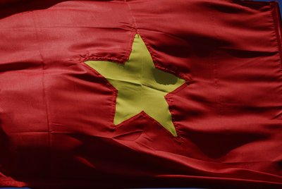 the vietnamese flag