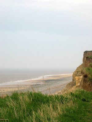Norfolk cliffs