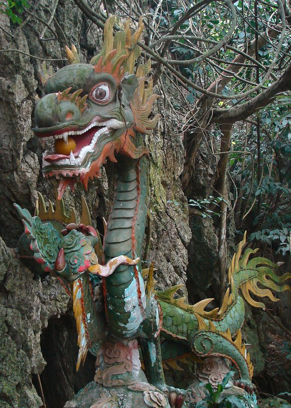 Dragon at Dong Van Thuy