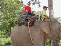 Riding an elephant again