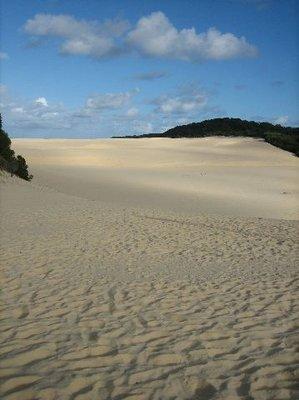 Fraser Island: Sand dunes near Lake Wabby