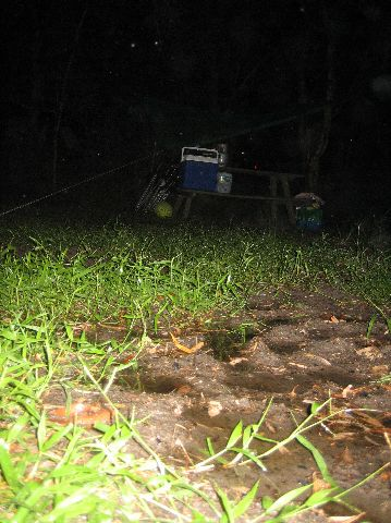 Fraser Island: Wet campground