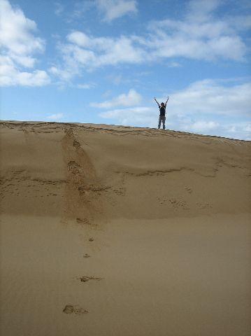Fraser Island: Wungul Sandblow