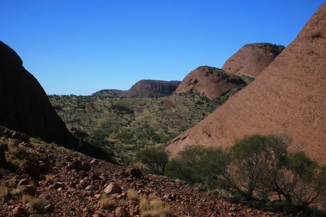 The Olgas