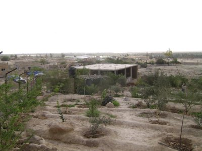View of the building from the top of the property