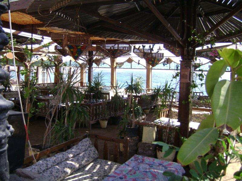 Dahab - hip cafe