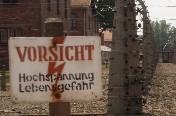 wed_Auschwitz.jpg