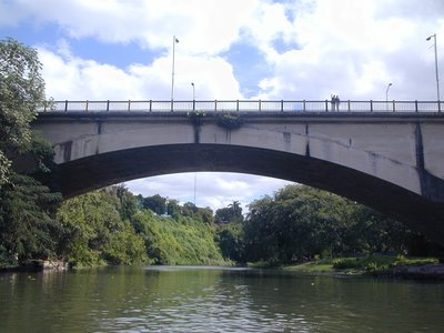 El Puente Almendares