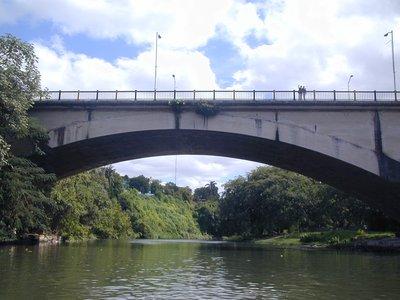 El Puente Almendares