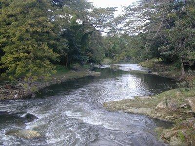 Río Almendares